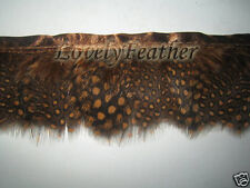 Guineafowl feather fringe brown gold color 2 yards trim