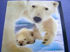 New! WHITE POLAR BEARS 3D Flicker-Type CHRISTMAS POSTCARD Picture Moves!