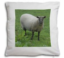 Sheep Intrigued by Camera Soft Velvet Feel Scatter Cushion Christmas , ASH-5-CPW