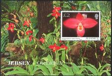Jersey 2004 Flowers/Orchids/Plants/Nature 1v m/s n26133