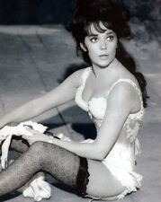 Natalie Wood 8x10 Classic Hollywood Photo. 8 x 10 B&W Picture #5