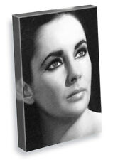 ELIZABETH TAYLOR - A5 Original Art Canvas Print #05