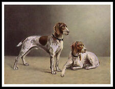 GERMAN SHORTHAIRED POINTER TWO DOGS GREAT VINTAGE STYLE DOG PRINT POSTER