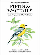 Pipits and Wagtails of Europe, Asia and North America: Identification and...