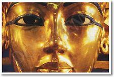 King Tut Egyptian Pharaoh  - Social Studies - POSTER