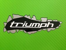 3D-effect Triumph Burst Through Decals Stickers PAIR #103
