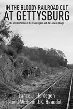In the Bloody Railroad Cut at Gettysburg: The 6th Wisconsin of the Iron Brigade