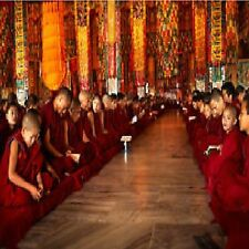 D135  RELAXATION AUDIO CD  SOUNDS OF THE TIBETAN MONASTERY