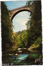 65 - cpsm - ST SAUVEUR - Le pont Napoléon
