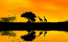 Framed Print - Africa Giraffes Walking to Feed on Trees (Picture Poster Art)
