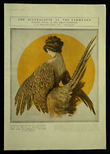 Suffragette In The Farmyard Madame Simone Chantecler 1910 1 Page Print Article