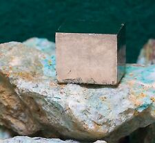 Collector Quality Pyrite Cubes Spain 003