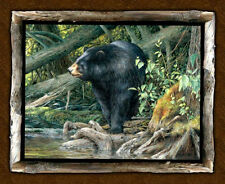 Blackfoot Canyon Wild Wings Bear Forest Wildlife Wall Panel Cotton Fabric PANEL