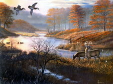 Modern art Decoration HD prints oil painting on canvas ducks and deer 20x24