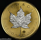 Gilded 2016 Canadian Maple Leaf 1 oz Silver Coin .9999 Fine, 24K Gold Reverse