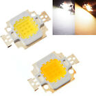 High Power 12V 10W LED Lamp Chip 900 Lumen -1000 Lumen White / Warm White Light