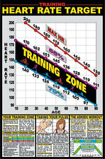 "Heart Rate Training Zone 24"" x 36"" Paper Poster -F12_A - by Fitnus Chart Series"