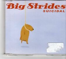 (FM300) Big Strides, Suicidal - 2004 CD