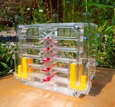Ameisenfarm AFK-8.1. New educational Ant farm - Formicarium for LIVE ants.