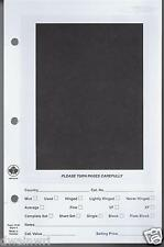 Unitrade #101B Stamp Dealer Window Pages - Box of 500  (Retail $74.95)