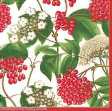 CASPARI 2 / 20ct Pkgs Berry Chintz Ivory Christmas Cocktail & Beverage Napkins