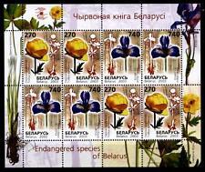 Das Rote Buch. Blumen. Trollblume, Schwertlilie. KB. Weißrußland 2003