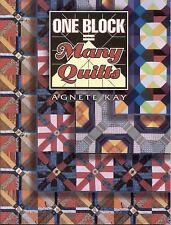 One Block Equals Many Quilts Book ~ by Barbara Smith