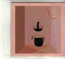 (DU331) Devendra Banhart, Never Seen Such Good Things - 2013 DJ CD