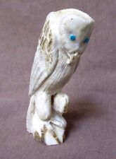 Native Zuni Amazing Antler Snowy Owl by Master Carver Derrick Kaamasee C1137