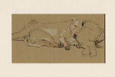 SLEEPING BULL TERRIER AND IRISH WOLHOUND 1934 CECIL ALDIN DOG ART PRINT MOUNTED