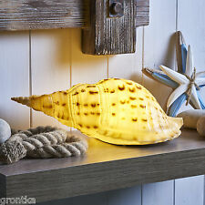 Seaside Nautical Sea Shell Table LED Lamp