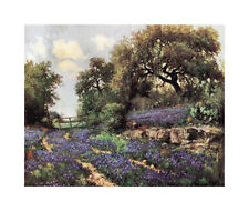 Blue Bonnet Trail Art Print by Porfirio Jr. Salinas - 36x31