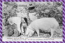 CPA - La Récolte de la Truffe - Groupe sympathique récoltant la truffe