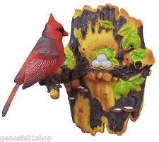 Chirping & Dancing Bird - Color Vary - Motion Sensor in gift colored box