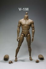 1/6 Scale  Male Muscle Body Action doll Figure Can Fit Hot Toys Head V-1M model