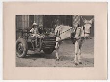 PHOTO ANCIENNE - Voiture à cheval Âne Attelage Enfants Chapeau - Vers 1930