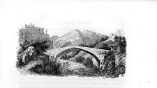 Stampa antica PONTE di WIMMIS valle Simmental Berna Switzerland 1885 Old print