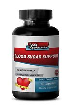 Banaba Extract - Blood Sugar Support 620mg - Helps Control Appetite Pills  1B