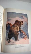 The Nature Lovers Library 1917 Mammals of America Antique Deer Dog Sheep Bears