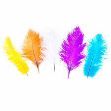 Pack of 5 Large Natural Dyed Arts & Crafts Fancy Dress Size Feathers - 5 Colours