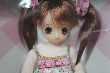 AZONE Doll Pureneemo ExCute Family My first diary Chisa 1/6 doll on Obitsu Body