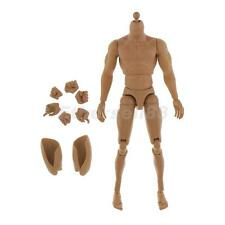 1/6th 12'' Male Action Figure Muscular Body for Hot Toys BBI Sideshow Enterbay
