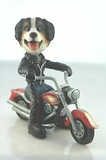BERNESE MOUNTAIN   DOG ON A MOTORCYCLE(SEE ALL BREEDS  BODIES @ EBAY STORE