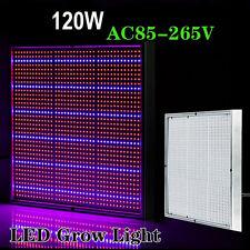 120W IR Full Spectrum 1365 LED Grow Light Panel Lamp For Indoor Veg Flower Plant