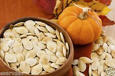 Pumpkin Seeds - 300 gms! Best Quality, Wholesale Price! unsalted unshelled
