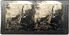 Keystone Stereoview Big Bend, Grand Canyon National Park, AZ from 1930s T400 Set