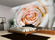 One Pink Rose Flower Wet Floral Wall Mural Photo Wallpaper GIANT WALL DECOR
