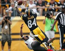 Antonio Brown Pittsburgh Steelers 8.5 x 11 in. Poster Print Photo Glossy #4