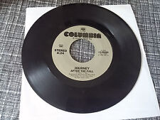 The New York Rock Ensemble 45 Beside You Columbia Promo 445288 Psych