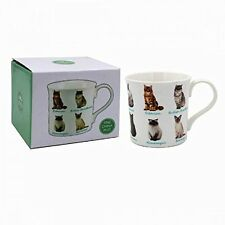 CAT Breeds Fine China Mug - *NEW* Boxed - Himalayan Burmese Siamese Siberian
